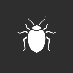 white bed bug on a gray background to represent bed bug treatments in houma