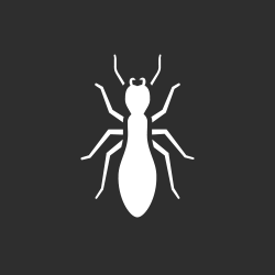 white image of a termite on a gray background to represent termite control in houma
