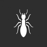 white termite on a gray background to represent termite treatments in new orleans
